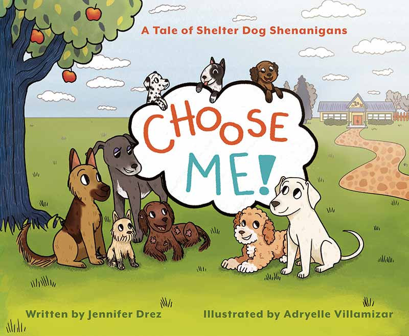 Choose Me Book Cover